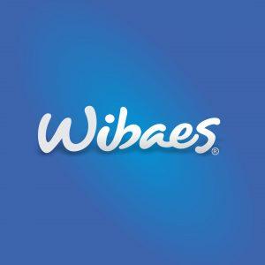 alt-area-clientes-wibaes